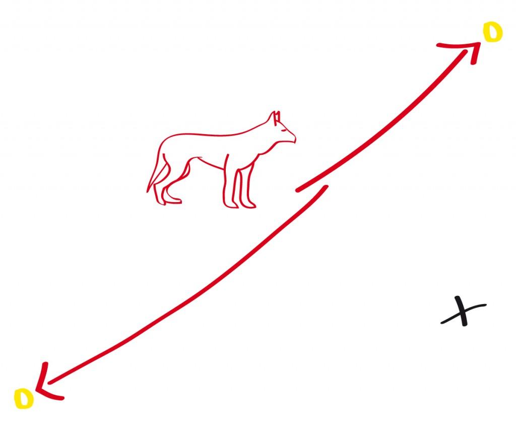 Zwei Targets links und rechts vom Hund sollen nun auf Anweisung wechselseitig ovn ihm angelaufen werden.