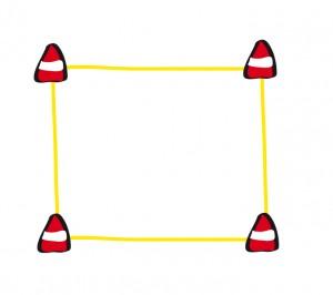 Die Obedience-Box besteht aus 4 Pylonen, die durch ein Boxband verbunden sind