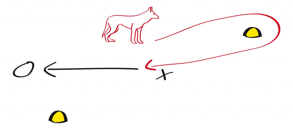 Der Hund steht dem Hundeführer gegenüber, rechts und links von diesem liegt jeweils eine Pylone um die der Hund mit Handzeichen geschickt wird