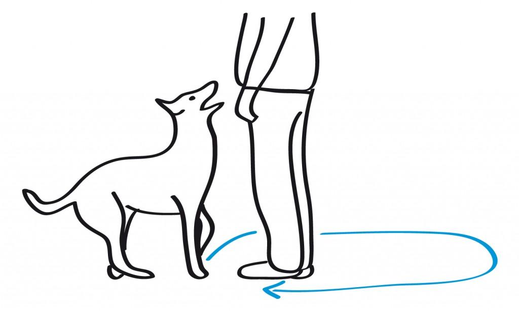 Skizze mit dem Laufweg für eine gerade Grundstellung