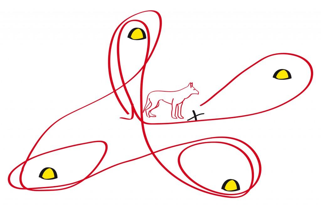Hund und Hundeführer stehen in der Mitte und der Hund umläuft auf Anweisung bestimmte Pylonen.