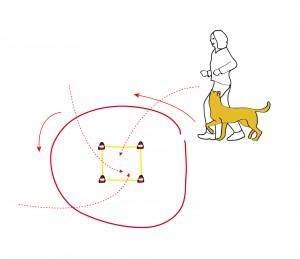 Beim Umrunden der Box wird der Hund von allen Seiten aus dem Laufen in die Box geschickt.