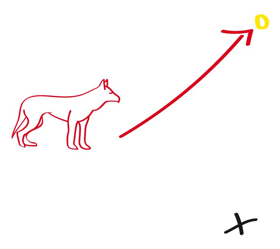 Schicke den dir gegenüber stehenden Hund nun mit Handzeichen zum Target
