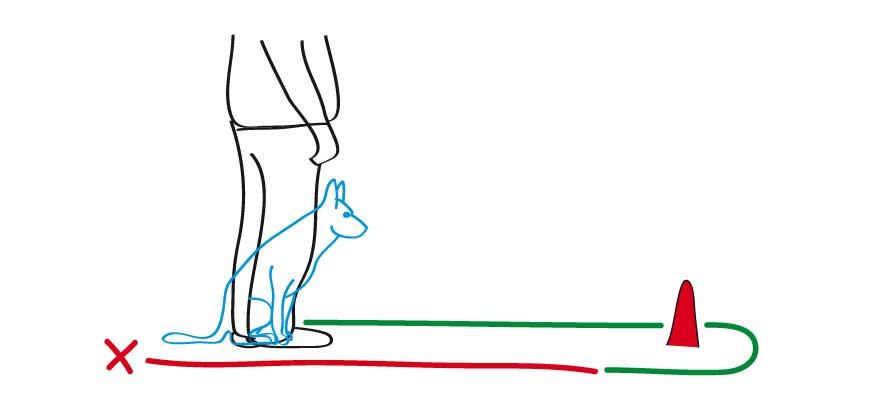 Schritt 2: Den Abstand weiter vergrößern