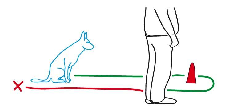 Schritt 2: Die Entfernung vergrößern