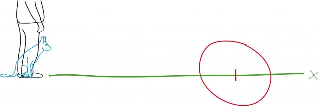 Skizze der Übung: Hundeführer steht 10m vor dem Kreismittelpunkt und das Spielzeug ein paar Meter hinter dem Kreis.